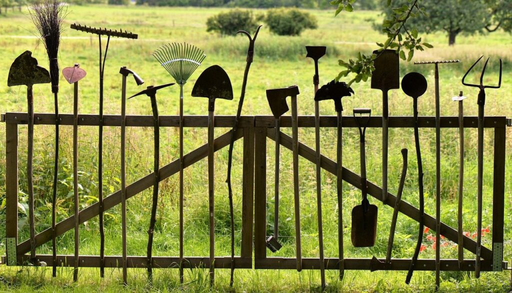 Tools you need for your lawn